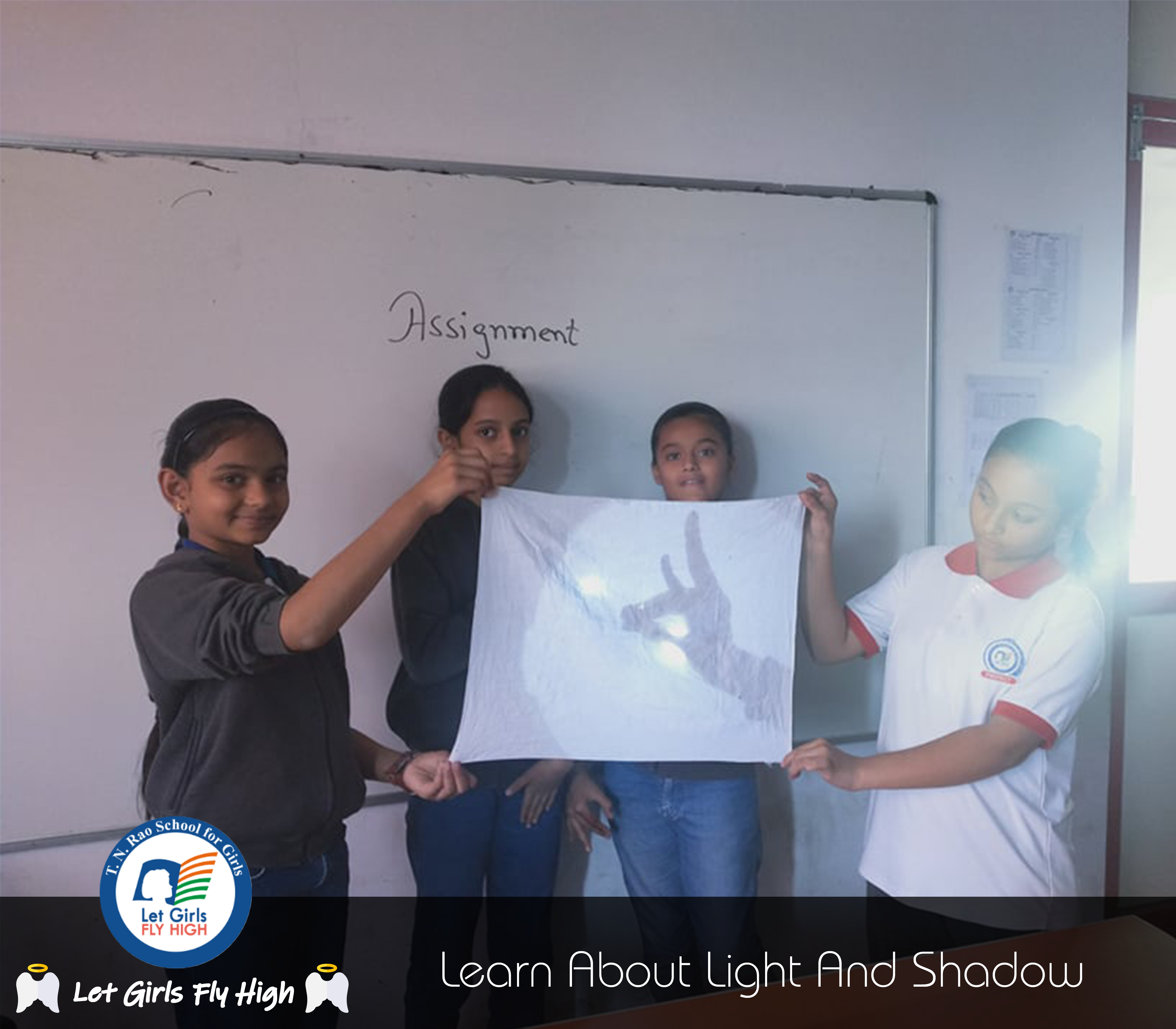 Light, shadow and reflection science activity